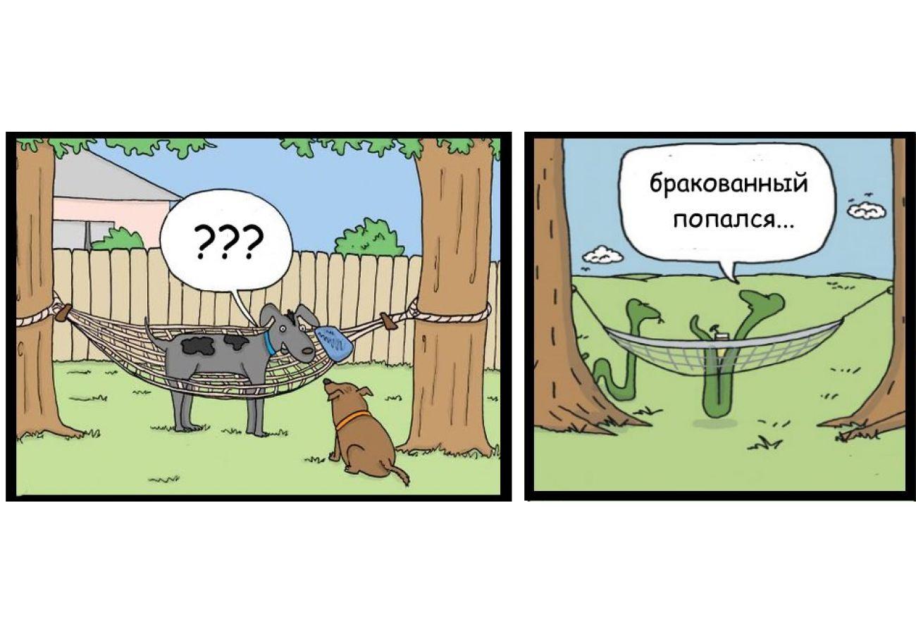 Колонка юмора: курьезы в гамаке
