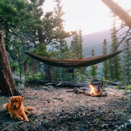 Туристический лагерь с палаткой и гамаком
