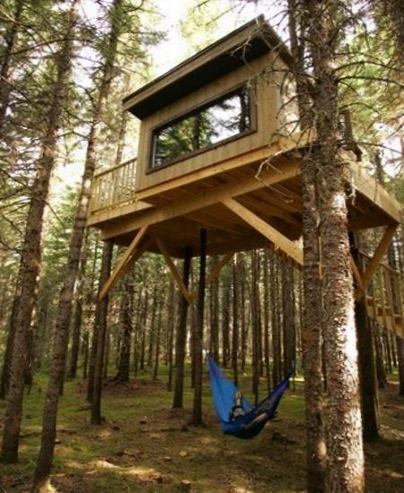 Лесной домик на дереве с гамаком