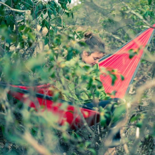 гамак в листве деревьев поход